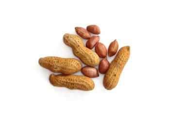 किसान मूंगफली (ground-nut) की खेती करके अच्छा मुनाफा कमा सकते हैं ,जाने मूँगफली की उन्नत खेती कैसे करे?