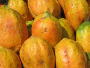 पपीते(Papaya)